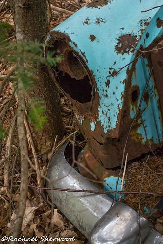 cars abandoned woodland nikon rust novascotia barrett abandonedcars nikond3100 beaverbankns