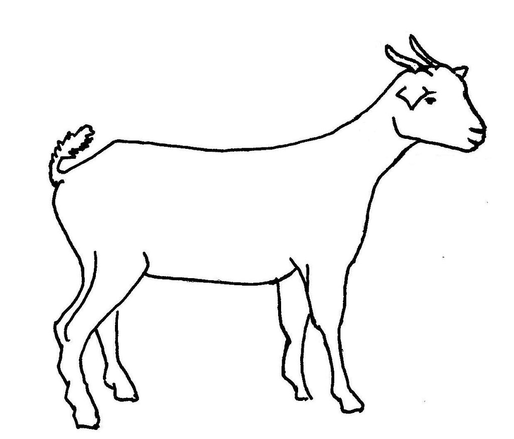 Line drawing of a goat | Used in information flyer on 'Good