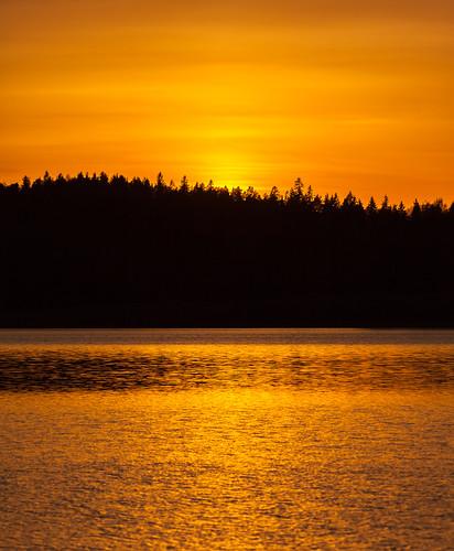 auringonlasku aurinko järvi kesä kulta lake landscape minimalistic pitkäjärvi silhouette sun sundown sunset espoo