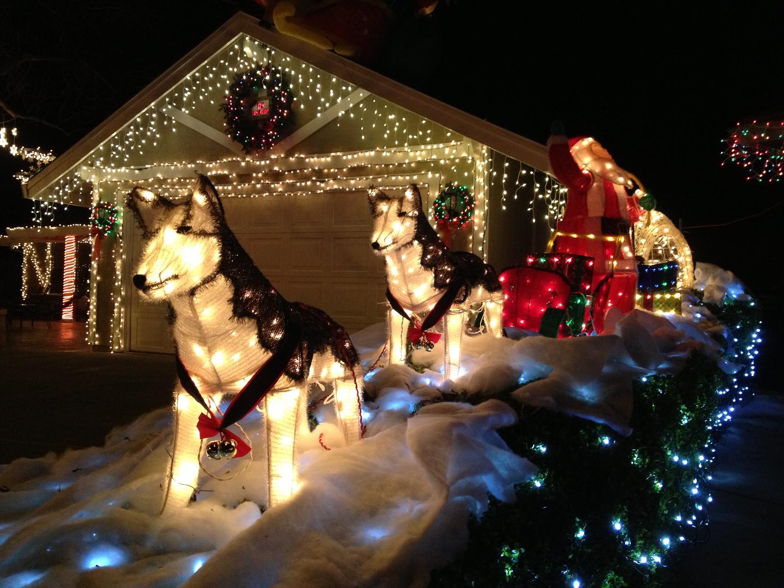 135/365 ~ Dovewood Court Christmas Lights