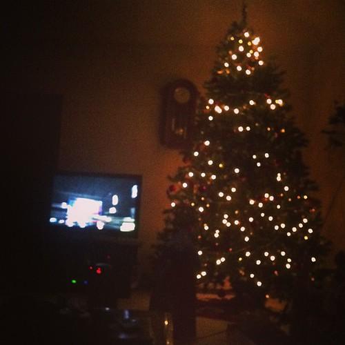 Christmas Tree. Family. Thunder. #perfect   by NathanGunter