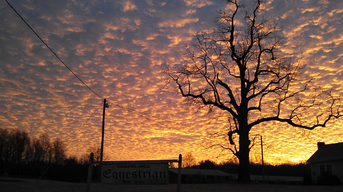 sunrise flickrandroidapp:filter=none