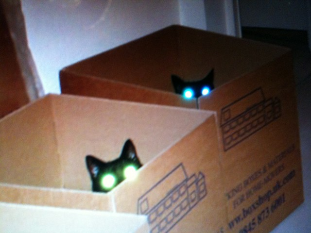 The girls glowing eyes