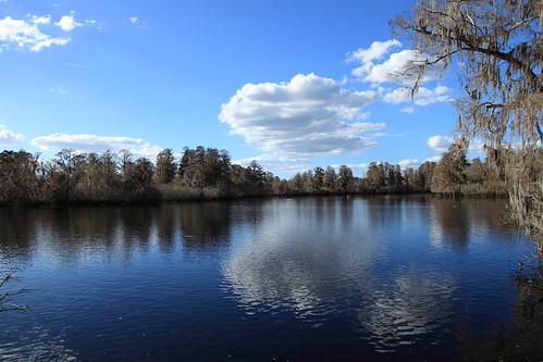 park county sky cloud lake reflection water canon reflections river tampa eos december view florida lettuce 5d mm skyer 2012 vand hillsborough udsigt 24105 louds mark2 flod sø ef24105f4lisusm reflektioner reflrktion