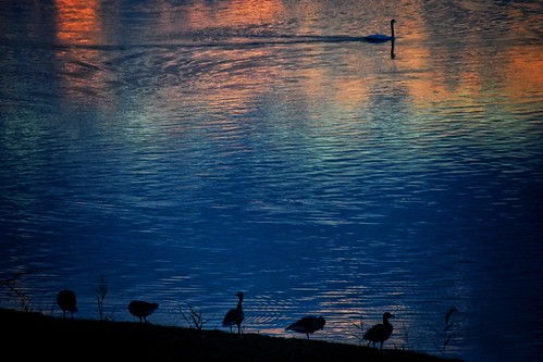 paddybb nikond5300 2016 silhouette deutschland wasser sunset schleswigholstein germany water sky seascape lübeck sun