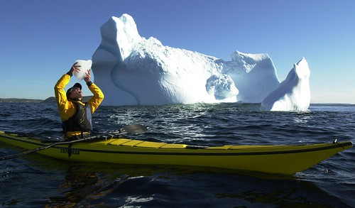 Kayaker drinking 'berg water! | by Linkum Tours
