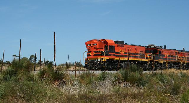 EP grain train