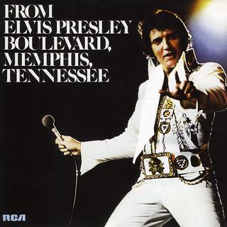 From Elvis Presley Boulevard, Memphis, Tennessee   by Brett Jordan