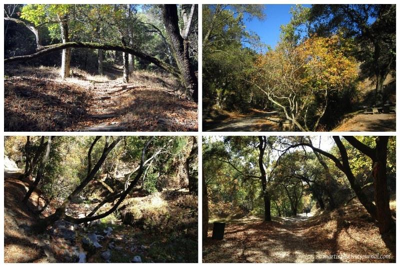 San Jose_Alum Rock Park (22)