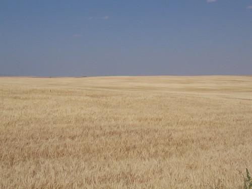 usa field landscape farm idaho