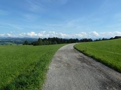 Scheidegg_1210099