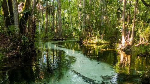 florida places dunnellon gissysprings