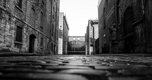 street city ireland bw dublin white black architecture photography gate europe sony guinness alpha cobbles nex cranestreet mygearandme nex7