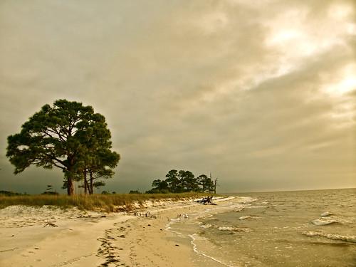 seascape beach sunrise bay seaside forgotten bayside panhandle apalachee forgottencoast