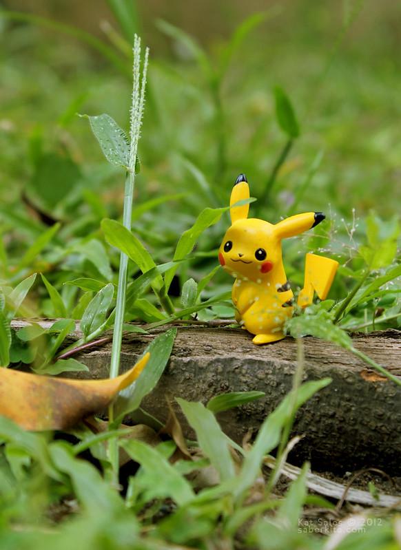 A Wild Pikachu Appeared
