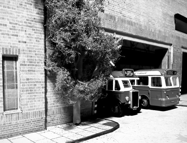 Yorkshire Traction Buses at the Garage