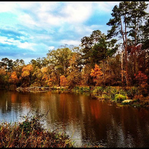 nature landscape thewoodlands uploaded:by=flickstagram instagram:photo=3371177500654373541307117 instagram:venue_name=georgemitchellnaturereserve instagram:venue=4544316