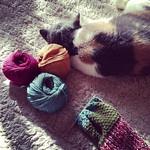 編み編み中毒です。 傍らにはいつもあんずはん。