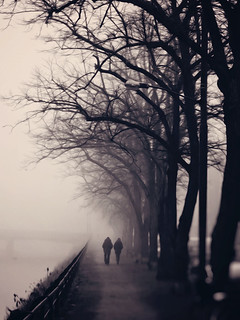 It's a somber stroll down this road that we call life | by Peterix