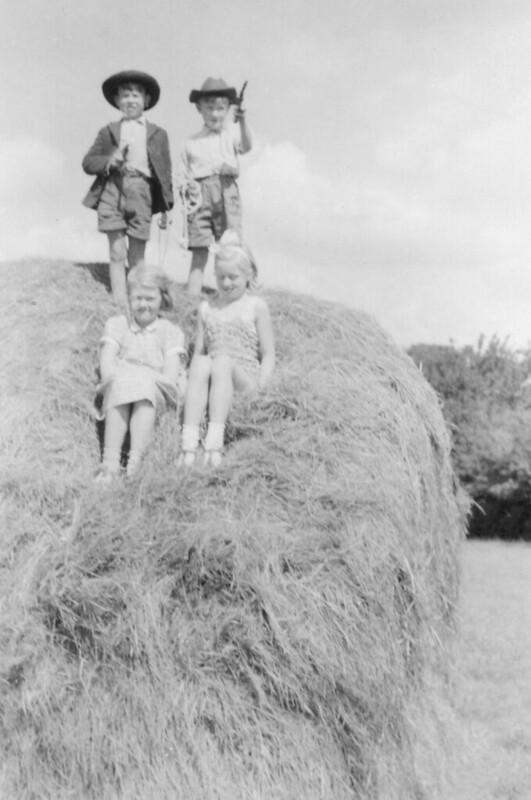 haystack4027