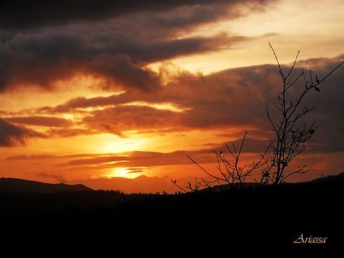 atardecer sundown enero galicia añonuevo aestrada herecomesthesun