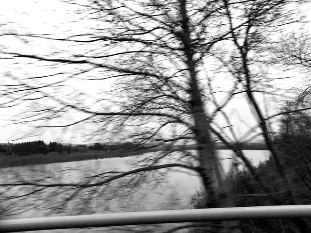 crossing fernbridge