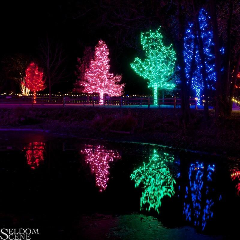 Reflecting On Christmas Seen At Hudson Gardens Littleton Flickr