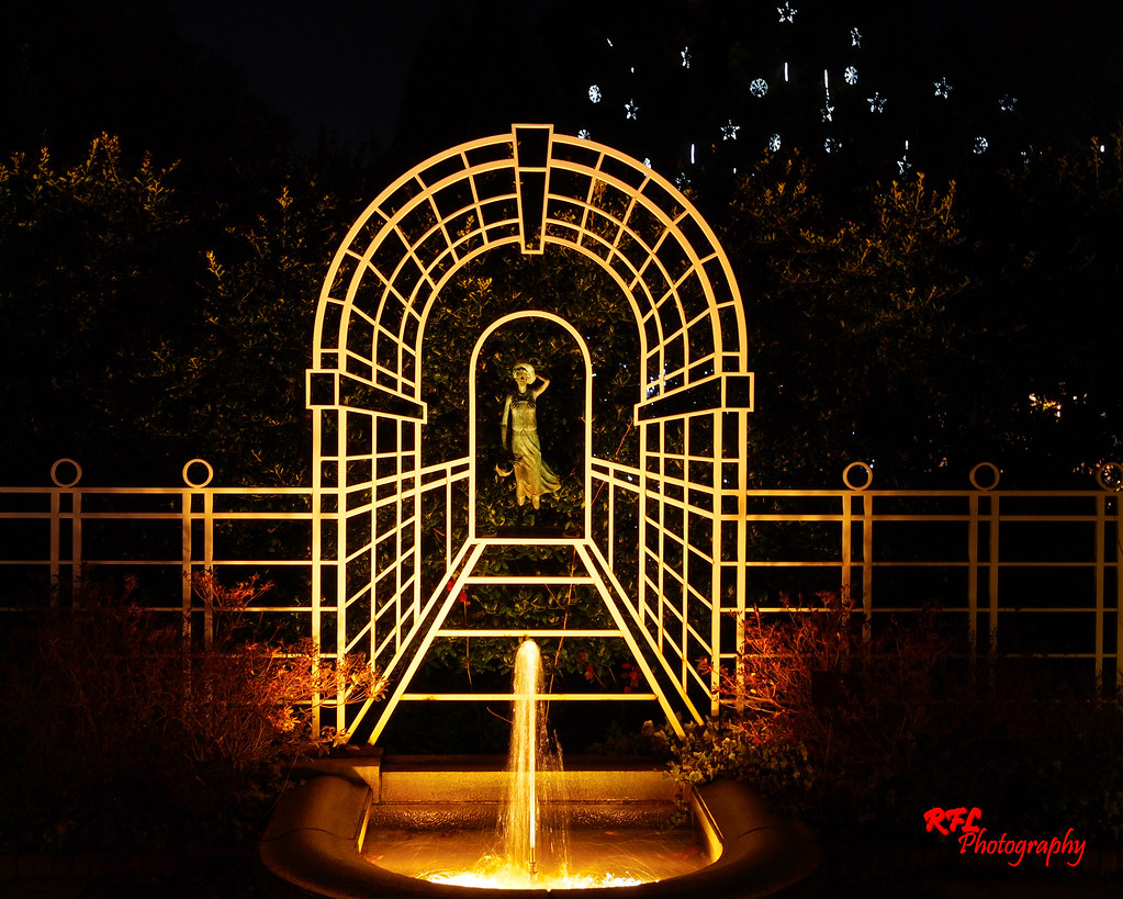 C228178 daniel stowe botanical gardens holiday lights - Daniel stowe botanical garden christmas ...