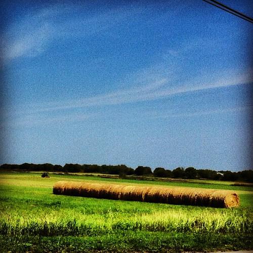 blue sky green nature texas bluesky pastures skyporn igtexas uploaded:by=flickstagram instagram:photo=2886148175530593003722690