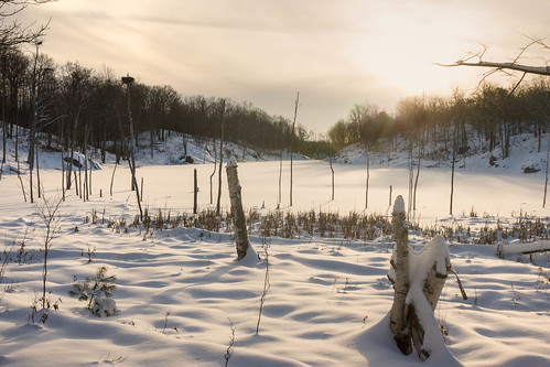 sunset snow ontario canada swamp perthroad