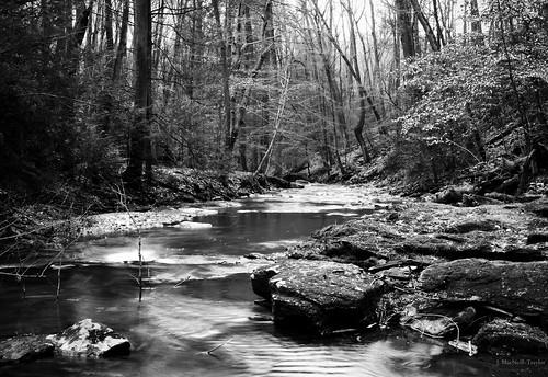 winter blackandwhite bw white black water creek forest river woods stream pennsylvania january pa lancastercounty tucquan holtwood tucquanglennaturepreserve gypsymarestudios jennifermacneilltraylor