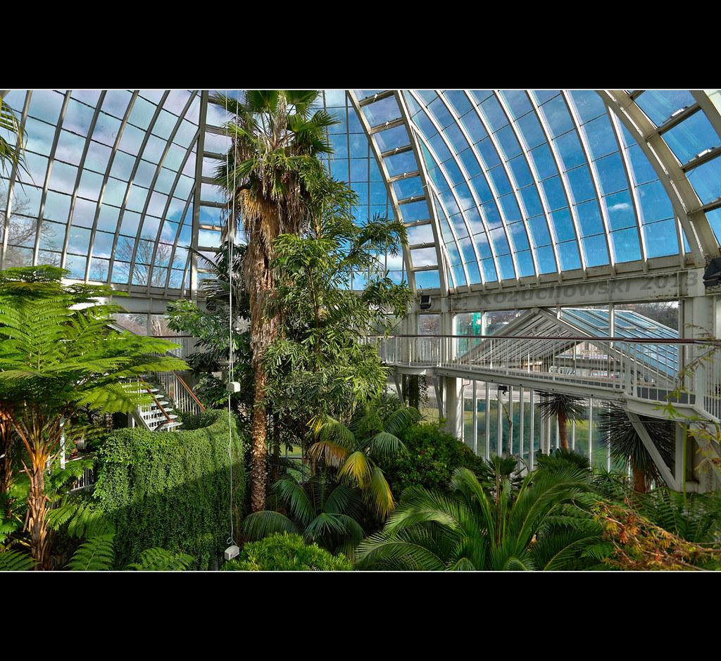 Geneve Jardin Botanique Paysage Tropical En Plein Geneve Flickr
