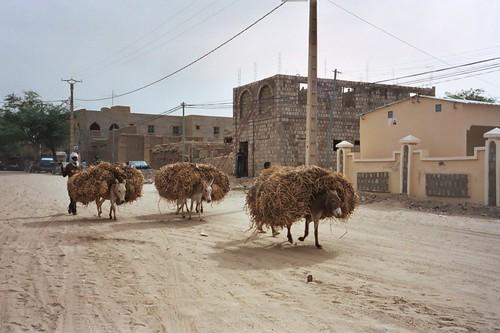 Main street of Timbuktu