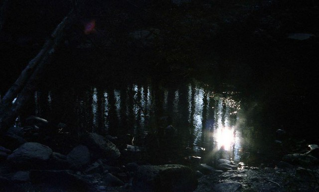 Shinning-darkly
