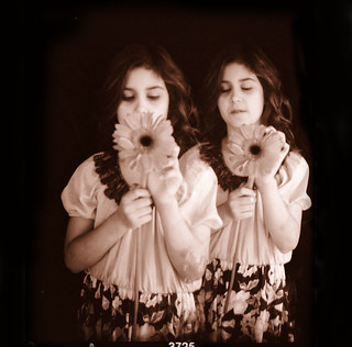 flower twins | by Laura Burlton - www.lauraburlton.com