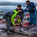 Faroe Islands 2018 by GisliSig