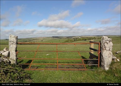©trevordurritt sonycybershotdschx9v digitalcompactcamera bolventor cornwall bodminmoor farm pasture farming england