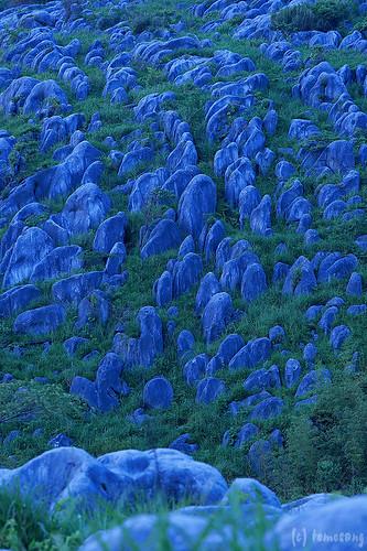fukuoka japan kitakyushu kokura green hiraodai 平尾台 福岡 北九州 小倉 緑 karst カルスト limestone plateau skyline スカイライン dusk bluemoment blue twilight night longexposure