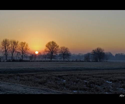 ice sunrise nikon alba campagna sole inverno vigevano ghiaccio d60 photomix veterinarifotografi mygearandme mygearandmepremium mygearandmebronze mygearandmesilver mygearandmegold besteverdigitalphotography