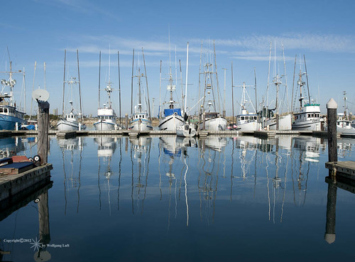oregon charleston fishingboats blinkagain
