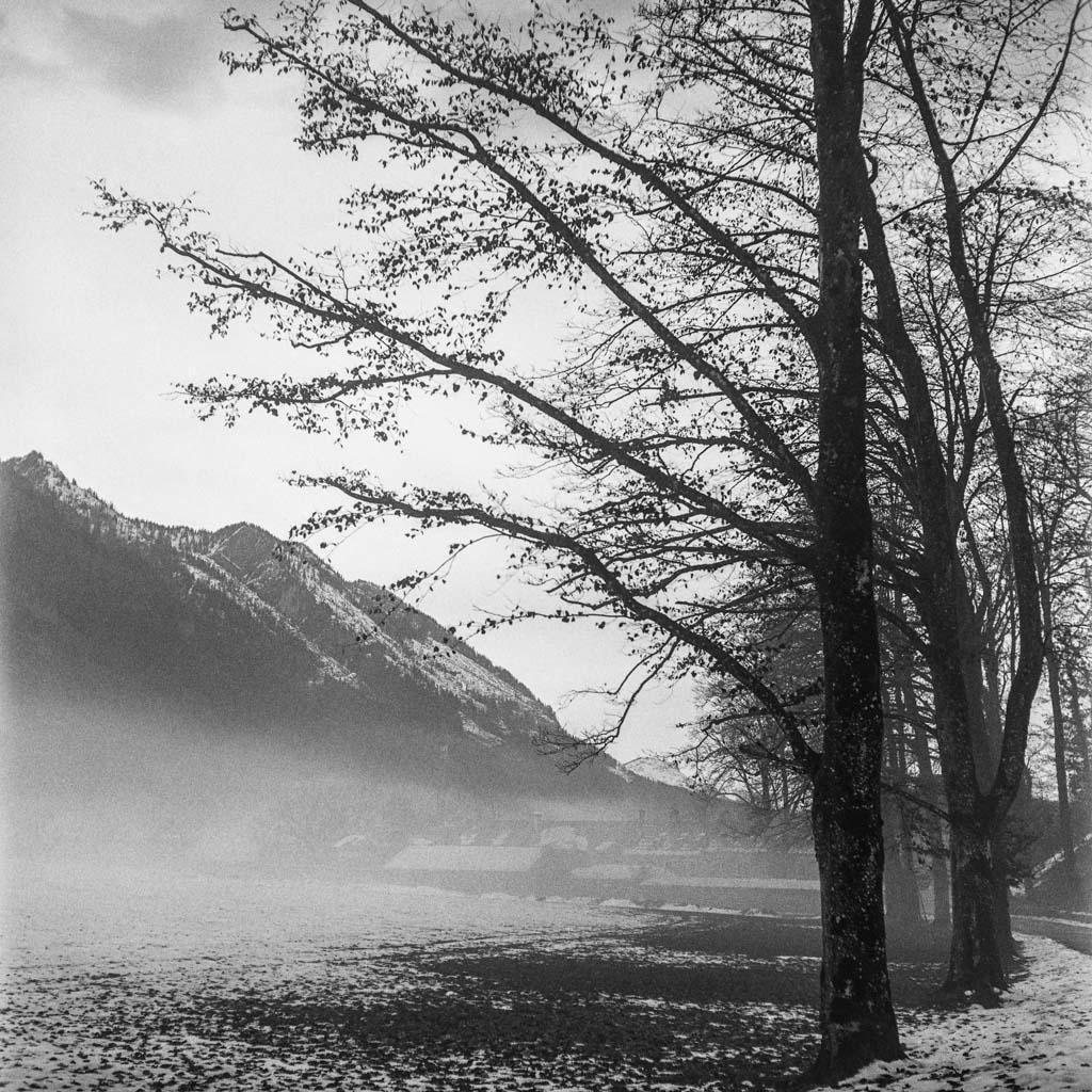 A walk in the winter wonderland IX