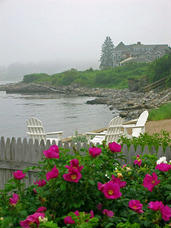 Room for Three, Biddeford Pool, Maine | by LibertyforCaptives