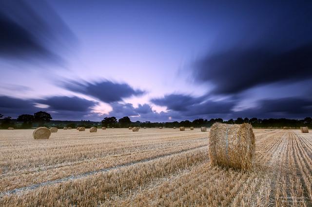 Landscape campaign - Brittany