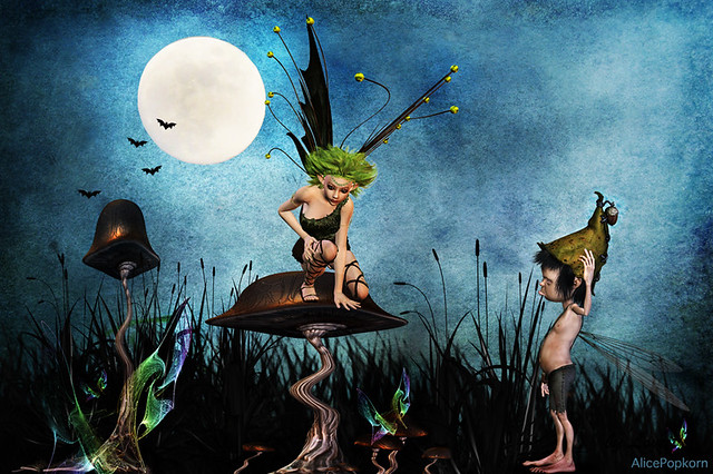 mushroom faries