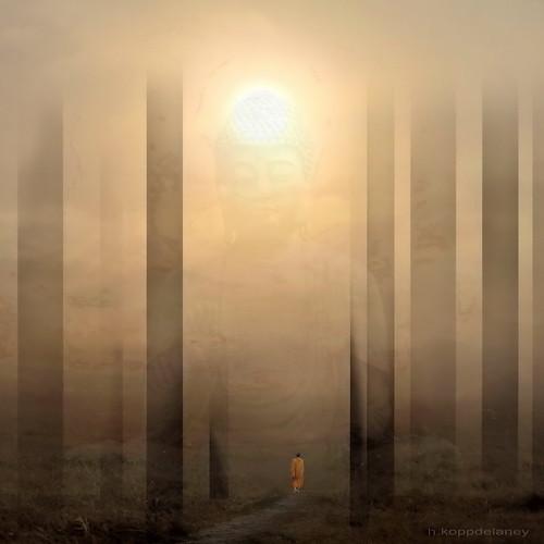 Spirit of Awakening | by h.koppdelaney