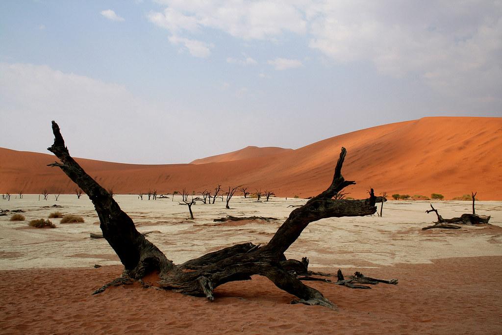The Dead Vlei, Sossusvlei, Namibia