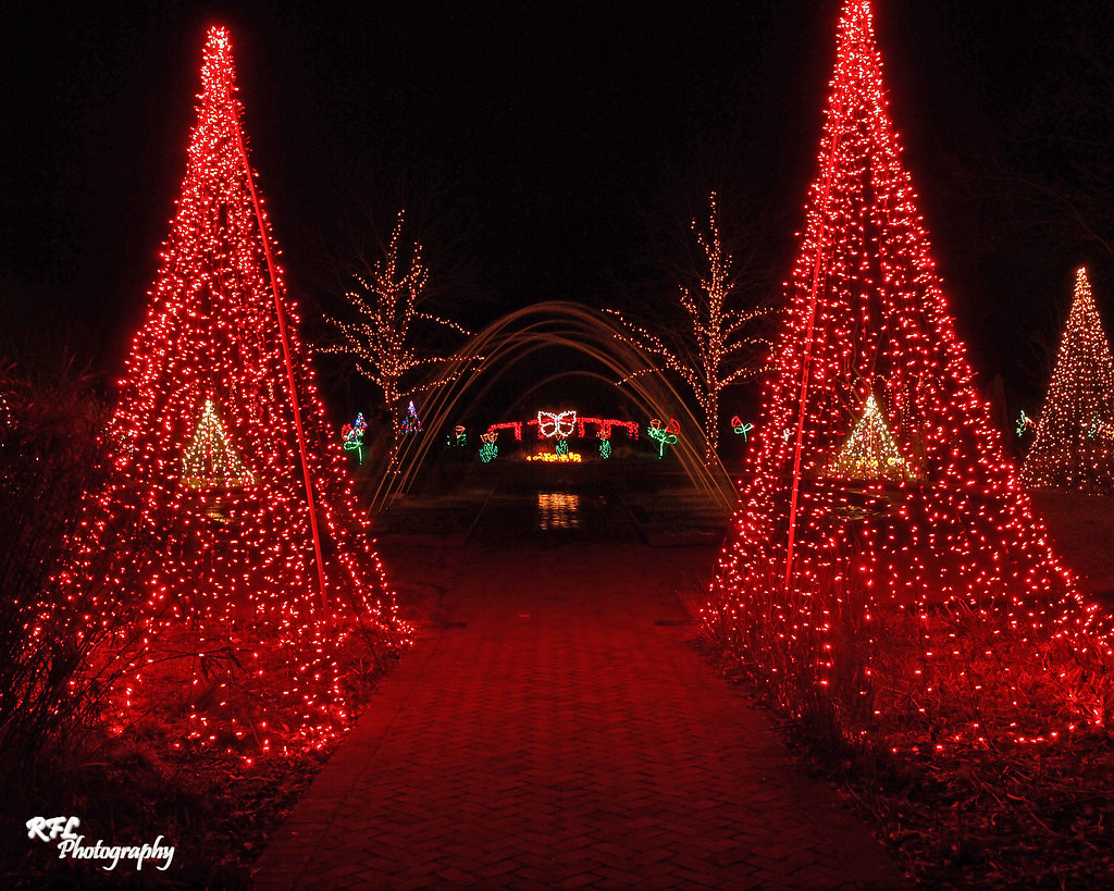 C228264 daniel stowe botanical gardens holiday lights - Daniel stowe botanical garden christmas ...