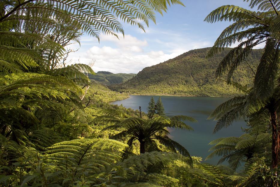 green lake walk rotorua
