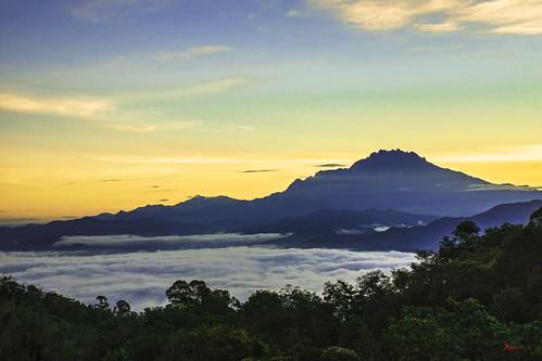 world heritage nature sunrise sabah bonzai a77 a35 mtkinabalu kinabalupark crockerrange kokol kgbambangan bukitkokol slta77v puraktana