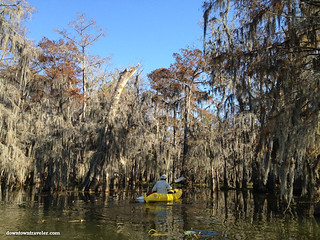 Cajun Country Alligator Swamp Tour 5 | by Downtown Traveler